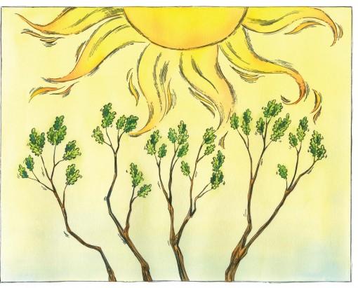 hugging tree sun